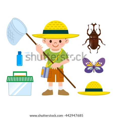 Insect collection set - stock vector