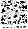 insect collection silhouettes - vector - stock vector