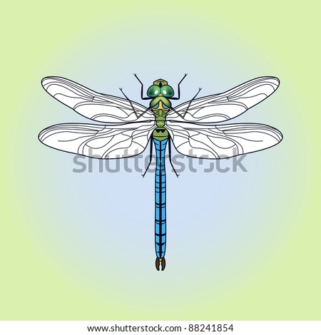 insect dragonfly in cartoon style - stock vector