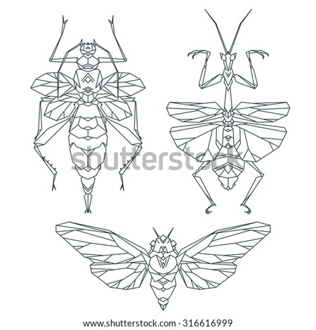 Insect icons, vector set. Abstract triangular style. Mantis, moth, beetle - stock vector