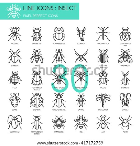 Insect , Thin Line and Pixel Perfect Icons - stock vector