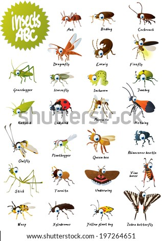 Insects ABC - stock vector