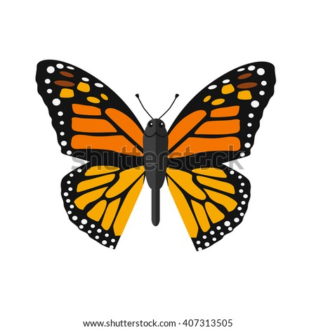 Insects butterflies isolated on white background. Beautiful butterfly with big wings and elegant orange and black colors pattern. Insect flying isolated on white backdrop. Vector ilustration - stock vector