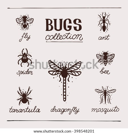 Insects collection kit. Bugs and beetles vector set. Tarantula, bee, spider, fly, dragonfly, mosquito, ant. - stock vector