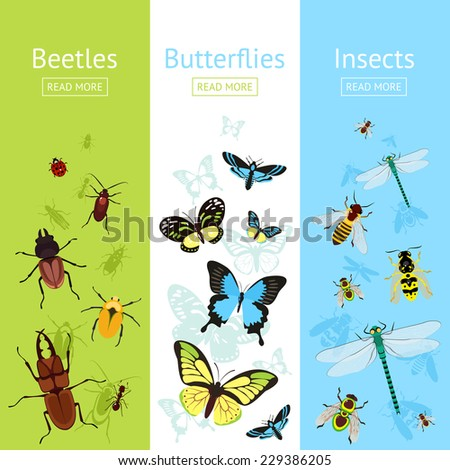 Insects colored decorative vertical banner flat set with beetles and butterflies isolated vector illustration - stock vector