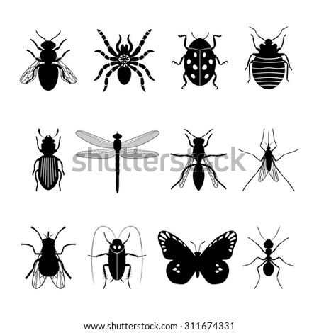 Insects icons. Insect vector silhouettes on white background - stock vector