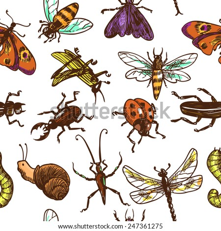 Insects sketch colored decorative seamless pattern with bug butterfly dragonfly vector illustration