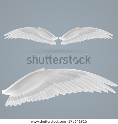 Inspiring wings drawn separately on  gray background. - stock vector