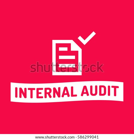 Internal Audit Icon