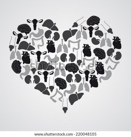 internal human body organs in heart shape eps10 - stock vector