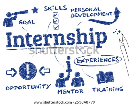 internship concept. Chart with keywords and icons - stock vector