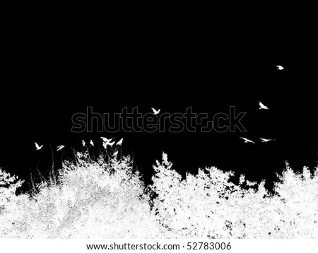 Inverted Silhouette of Treetops and Birds - stock vector