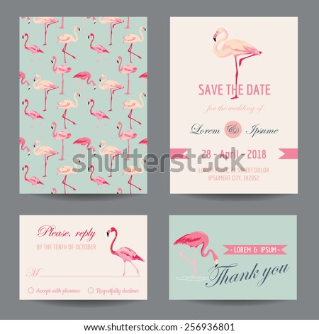 Invitation/Congratulation Card Set - Flamingo Theme - in vector - stock vector