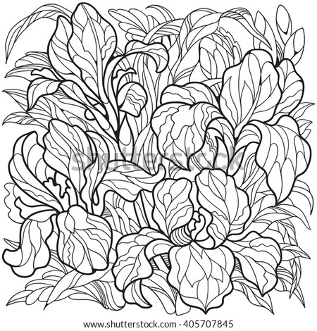 Iris flowers. Coloring page for adult and older children