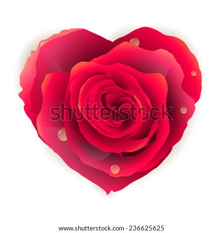 Isolated beautiful red rose-heart on the white background. EPS 10 vector file included - stock vector