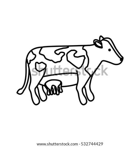 Isolated cow design