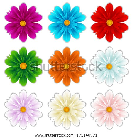 isolated flowers diferent colors. Vector illustrations - stock vector