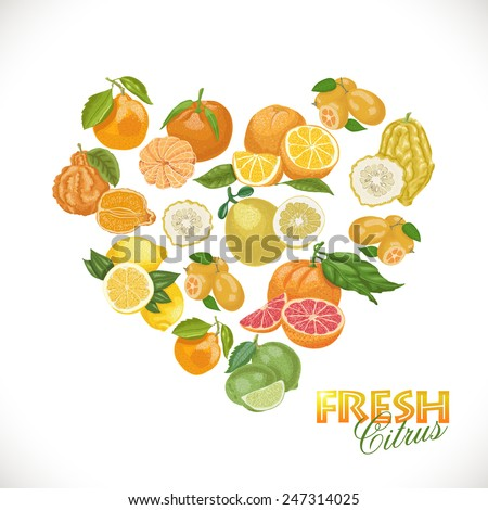 Isolated heart of citrus on a white background. Vector illustration for your design - stock vector