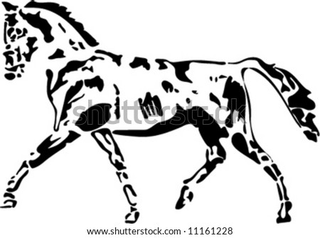 isolated horse vector
