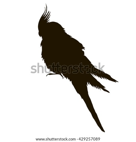 isolated, silhouette of a bird. a parrot. vector.