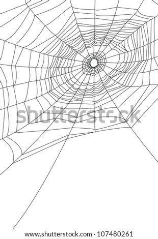 isolated spider web or cobweb background for halloween. - stock vector