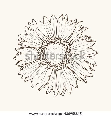 Sunflower Outline | www.pixshark.com - Images Galleries ...