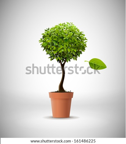 Isolated tree in clay pot - stock vector