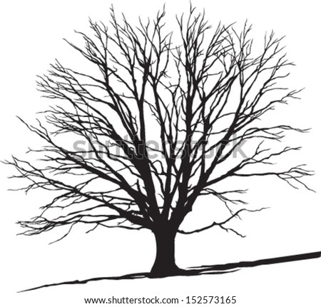 isolated tree on the hill - stock vector