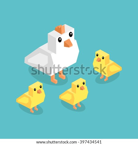Isometric white chicken with yellow chick. Isometric white 3d chicken with yellow chickens isolated on background, cute a little young farm bird fluffy, adorable small bird poultry vector illustration - stock vector