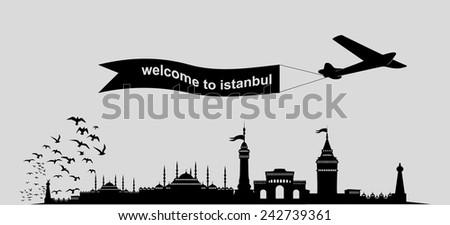 istanbul city graphic design vector art - stock vector