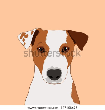 jack russell terrier, The buddy dog - stock vector