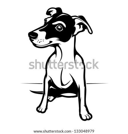 jack russell terrier. vector illustration - stock vector