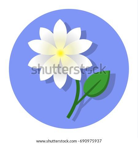 Jasmine Flower Icon Vector Illustration Symbol Stock Vector