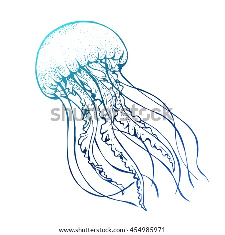 jelly fish line art vector illustration stock vector 454985971 rh shutterstock com jellyfish vector png jellyfish vector png