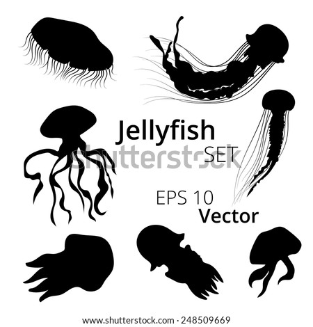 Jellyfish Stock Photos, Royalty-Free Images & Vectors ...  Jellyfish Stock...