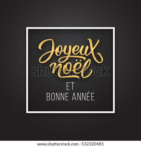 Joyeux Noel et Bonne Annee greetings on french in frame on luxury black and golden color background. Premium vector illustration with typographic text for Merry Christmas card design.