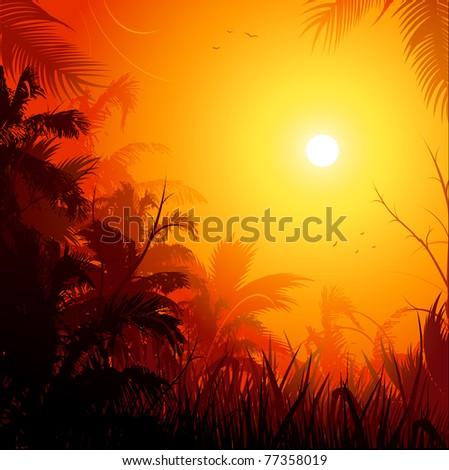 Jungle at sunset background illustration - stock vector