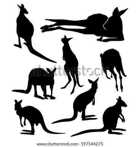 Kangaroo silhouette set - stock vector