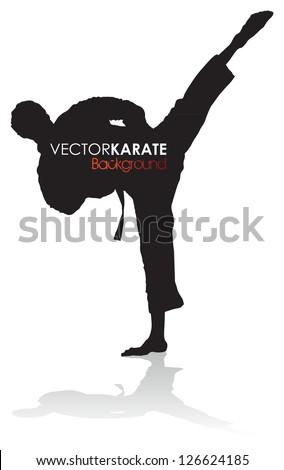 karate silhouette - stock vector