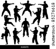 Karate silhouettes - stock photo