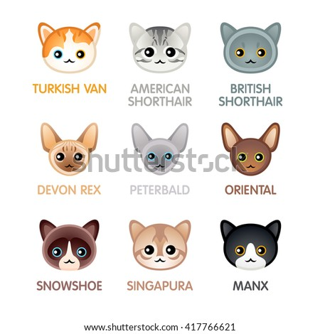 Kawaii cat breed head icons, set III
