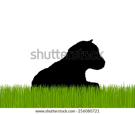 Kid ram silhouette  - stock vector