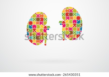 Kidneys Jigsaw Puzzle Pieces Abstract - stock vector