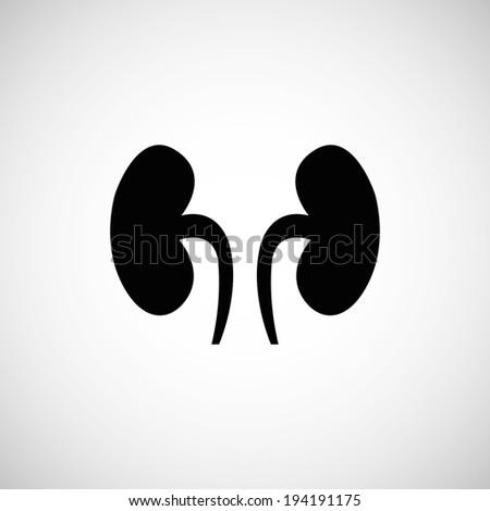 Kidneys symbol, vector illustration - stock vector