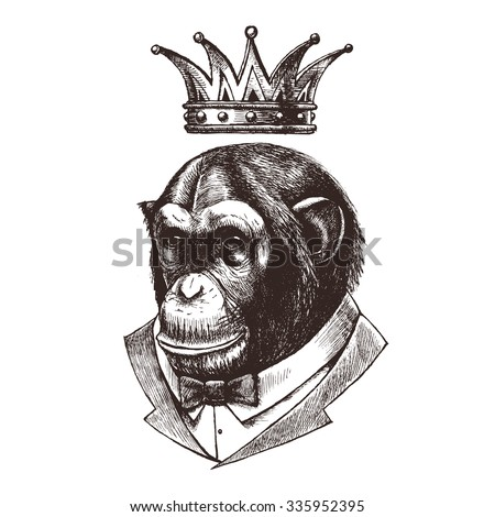 King of monkeys. ?himpanzees in the tuxedo and in the crown. Vector illustration. - stock vector