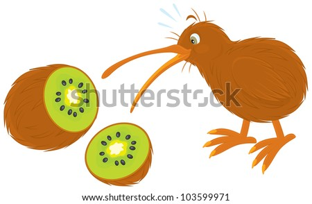 Kiwi Fruit Silhouette Kiwi Bird And Kiwi Fruit