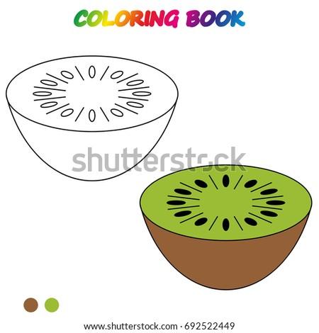 Kiwi Fruit Slice Closeup Icon Isolated Stock Vector 236506615