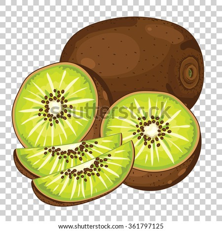 Kiwi vector isolated on transparent background