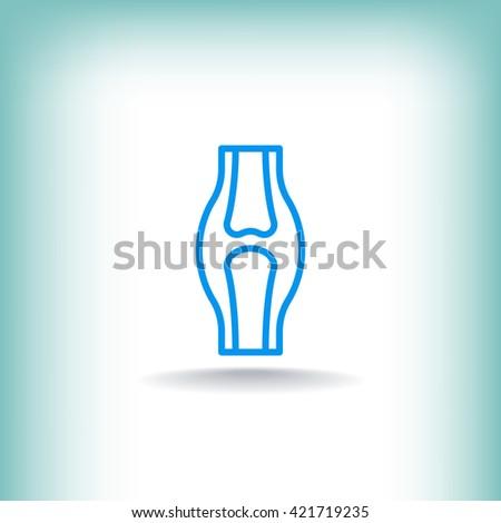 Knee joint icon, Knee joint icon eps 10, Knee joint icon vector, Knee joint icon illustration, Knee joint icon jpg, Knee joint icon picture, Knee joint icon flat, Knee joint icon design. - stock vector