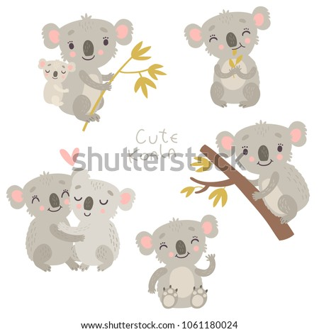 Koala, cute vector illustration